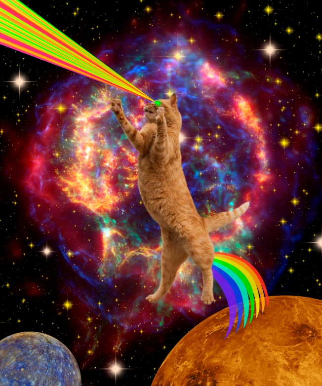 br_collage_space cat_gloria sanchez