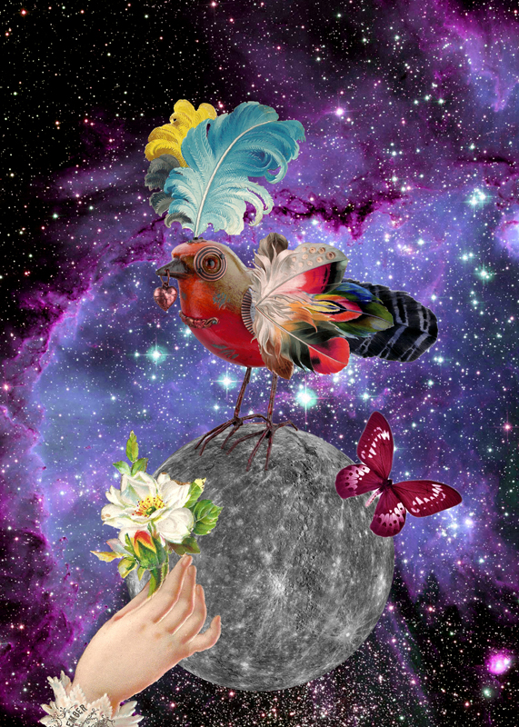br_collage_steampunkbird_gloriasanchez